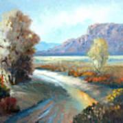 Colors Of The Desert Art Print