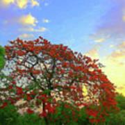 Colours Of Nature Art Print