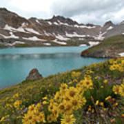 Columbine Lake And Alpine Sunflower Landscape Art Print