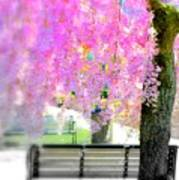 Come Sit By The Cherry Blossoms Art Print