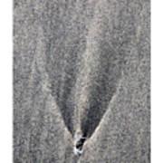 Comet Art Print by Peter Tellone