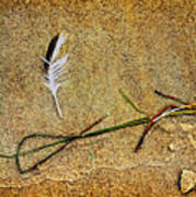 Coming Home To Mother Nature Zen Art Print