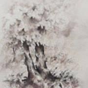 Coming Storm Art Print