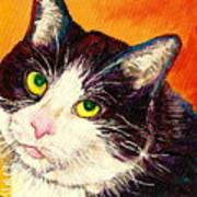 Commission Your Pets Portrait By Artist Carole Spandau Bfa Ecole Des Beaux Arts  Art Print