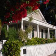 Conch House In Key West Art Print by Susanne Van Hulst