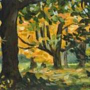 Concord Fall Trees Art Print by Claire Gagnon