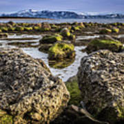 Conglomerate Boulders, Green Point, Nl Art Print