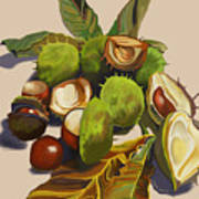 Conkers Print by Jane Tomlinson