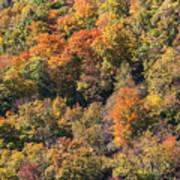Connecticut Fall Color Art Print