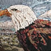 Consumer Eagle Veiw  Art Print