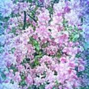 Cool Blue Apple Blossoms Art Print