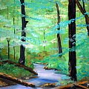 Cool Mountain Stream Art Print