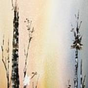 Cool Spring Art Print