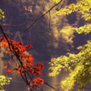 Cool Vermont Autumn Day Art Print