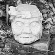 Copan Ruins Artifacts IIi Art Print