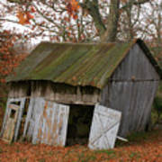 Copening Hill Shed Art Print