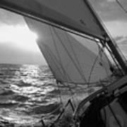 Coquette Sailing Art Print