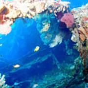 Coral Archways Art Print