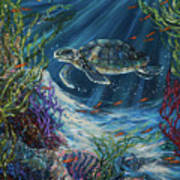 Coral Reef Turtle Art Print