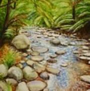 Coranderrk Creek Yarra Ranges Art Print