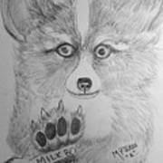Corgi Pup Art Print