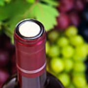 Cork Of Wine Bottle  Print by Anna Omelchenko