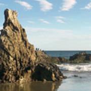 Cormorants At El Madador Beach Art Print