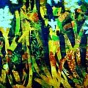 Corner Of The Woods Art Print