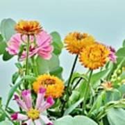 Cornflowers 20 Art Print