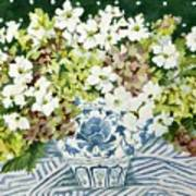 Cosmos And Hydrangeas In A Chinese Vase Art Print
