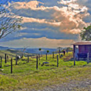 Costa Rica Cow Farm Art Print