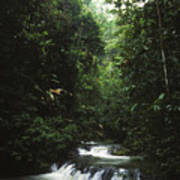 Costa Rica Waterfall In The Carocavado Print by James Forte