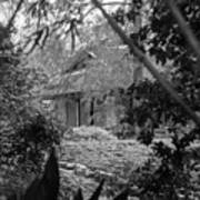 Cottage Black White Gardens Louisiana  Art Print