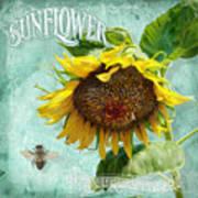 Cottage Garden - Sunflower Standing Tall Art Print