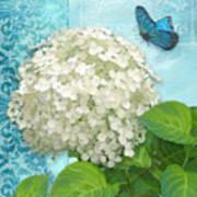 Cottage Garden White Hydrangea With Blue Butterfly Art Print