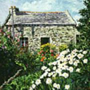 Cottage Of Stone Art Print by David Lloyd Glover