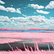Cotton Candy Marsh Art Print
