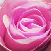 Cotton Candy Pink Art Print