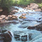 Cotton Wood Creek #4 Art Print