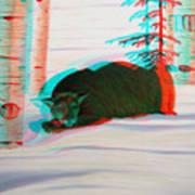 Cougar - Use Red-cyan 3d Glasses Art Print