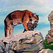 Cougar and Cub Art Print