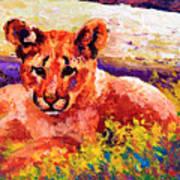 Cougar Cub Art Print