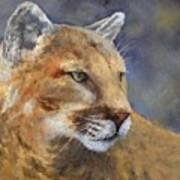 Cougar Art Print by Debra Mickelson