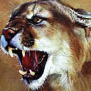 Cougar Print by J W Baker