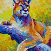 Cougar Portrait I Art Print