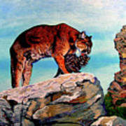 Cougars Mother And Cub Art Print