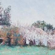 Country Cottage In Spring Time Art Print