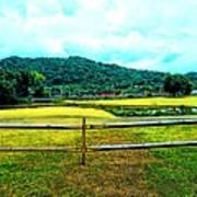 Country Field Art Print