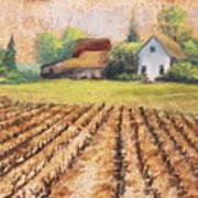 Country Harvest Art Print