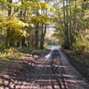 Country Lane In Autumn 2 Art Print